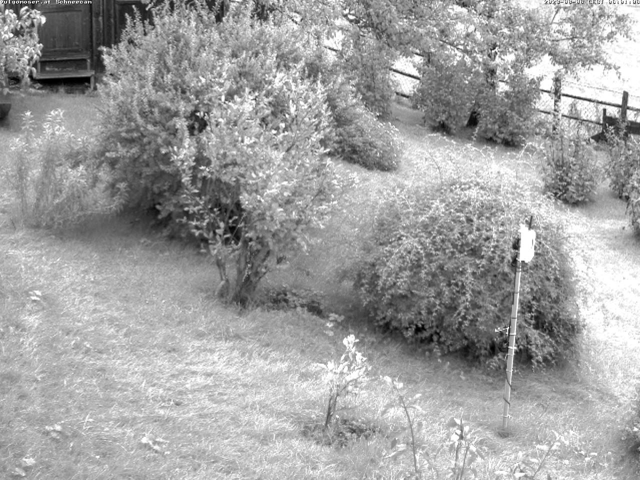 Schnee aktuell